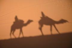 Sombras del camello en la arena de Sahara Desert en Marruecos Imagen de archivo libre de regalías