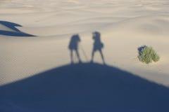 Sombras del fotógrafo Imagen de archivo libre de regalías