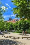 Sombras del jardín de Praga fotografía de archivo libre de regalías