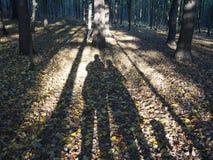 Sombras del otoño de un par con un perro imágenes de archivo libres de regalías