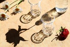 Sombras del verano imagen de archivo libre de regalías