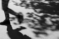 Sombras del verano Imagenes de archivo