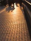 Sombras do negócio Imagens de Stock Royalty Free