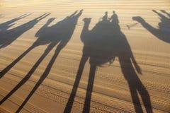 Sombras do passeio do camelo do tempo da praia Fotografia de Stock