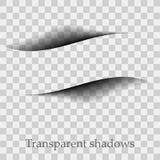 Sombras do vetor isoladas Divisor da página com as sombras transparentes isoladas Grupo de efeitos de sombra ilustração do vetor
