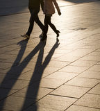 Sombras e silhuetas Fotos de Stock Royalty Free