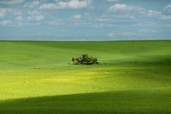 Sombras en campo y una pequeña vertiente Foto de archivo