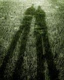 Sombras en hierba verde foto de archivo