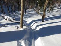 Sombras en la nieve Fotos de archivo libres de regalías