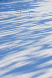 Sombras en la nieve Imágenes de archivo libres de regalías
