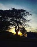 Sombras en la puesta del sol foto de archivo libre de regalías