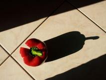 Sombras largas Foto de archivo
