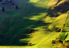 Sombras largas de la tarde de la ladera verde Imagenes de archivo