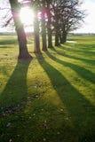 Sombras longas Foto de Stock Royalty Free