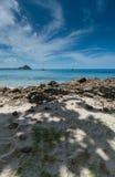 Sombras na areia com o mar além foto de stock