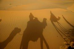Sombras no deserto Imagem de Stock