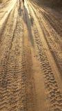 Sombras que caminan en la arena Foto de archivo