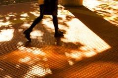 Sombras y siluetas de la ciudad del otoño Imagenes de archivo