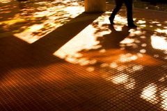Sombras y siluetas de la ciudad del otoño Imagen de archivo