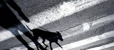 Sombree la silueta de una persona y de un perro en cruzar del correo Imagen de archivo