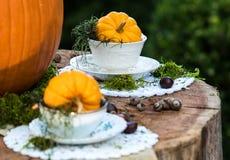 Sombrerero y Alice Thanksgiving o fiesta del té enojada de Halloween en el bosque Fotografía de archivo libre de regalías