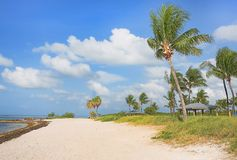 Sombrero Beach, Marathon, Florida Keys. Sombrero Beach in Marathon, Florida Keys with palm trees royalty free stock photo