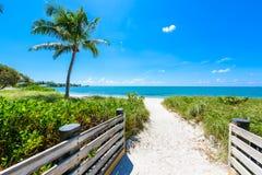 Sombrero Beach with palm trees on the Florida Keys, Marathon, Fl. Orida, USA. Tropical and paradise destination for vacation stock photography