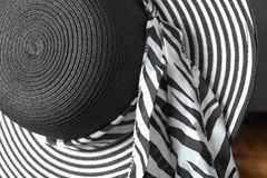 Sombrero Brimmed ancho de las señoras imagenes de archivo