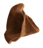 Sombrero de Brown aislado Imágenes de archivo libres de regalías