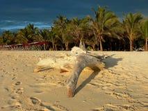 Sombrero de Cayo, Parque National de Morrocoy, Venezu imágenes de archivo libres de regalías