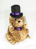Sombrero de Dolly Beaver The Pacemakers Imagen de archivo libre de regalías