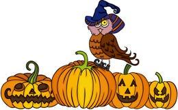Sombrero de la bruja del búho que lleva con las calabazas de Halloween Foto de archivo libre de regalías