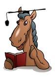 sombrero de la graduación del desgaste del caballo del escolar Imagen de archivo