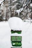 Sombrero de la nieve en la cerca en bosque del invierno en Rusia, Siberia Fotos de archivo