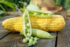 Sombrero de los guisantes verdes, del maíz, del trigo y de paja. Fotografía de archivo
