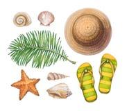 Sombrero de paja, chancletas, cáscaras y estrellas de mar