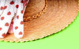 Sombrero de paja y guantes que cultivan un huerto Fotografía de archivo