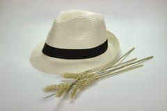 Sombrero de paja y oídos del trigo Foto de archivo libre de regalías
