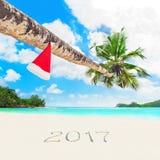 Sombrero de Papá Noel de la Navidad en la palma en la estación tropical 2017 de la playa Foto de archivo