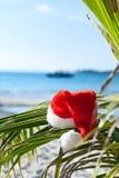 Sombrero de Santa rojo que cuelga en la palmera en la playa Fotografía de archivo libre de regalías