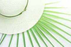 Sombrero de Sun de las mujeres elegantes con Ribon en la hoja de punta de la palmera en el fondo blanco Luz del sol brillante Vac Fotos de archivo