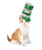 Sombrero del día de Cat Wearing Sequin St Patricks Foto de archivo libre de regalías