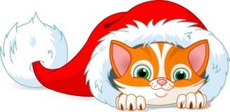 Sombrero del gato Imágenes de archivo libres de regalías