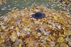 Sombrero femenino en el parque Imagen de archivo libre de regalías