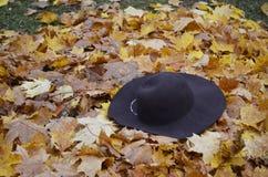 Sombrero femenino en el parque Fotos de archivo libres de regalías