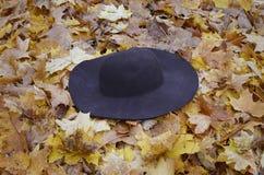 Sombrero femenino en el parque Imagen de archivo
