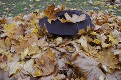 Sombrero femenino en el parque Imágenes de archivo libres de regalías