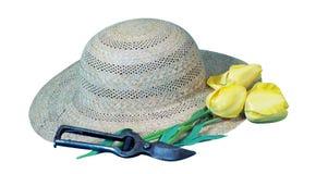 Sombrero, flor y secateur del ` s del jardinero Imagen de archivo