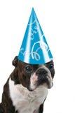 Sombrero grande del cumpleaños Imagenes de archivo
