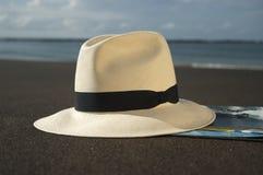 Sombrero marrón con estilo Imagenes de archivo